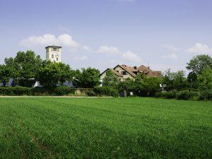 Friedrichshof 3